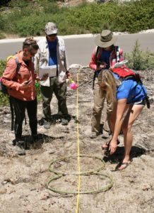 Learning Scientific Sampling Methods NERDS 2016